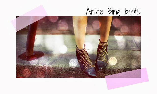 Clones Anine Bing y LV